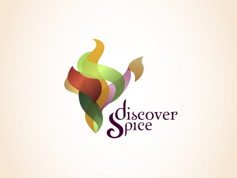 Discover Spice - Logo
